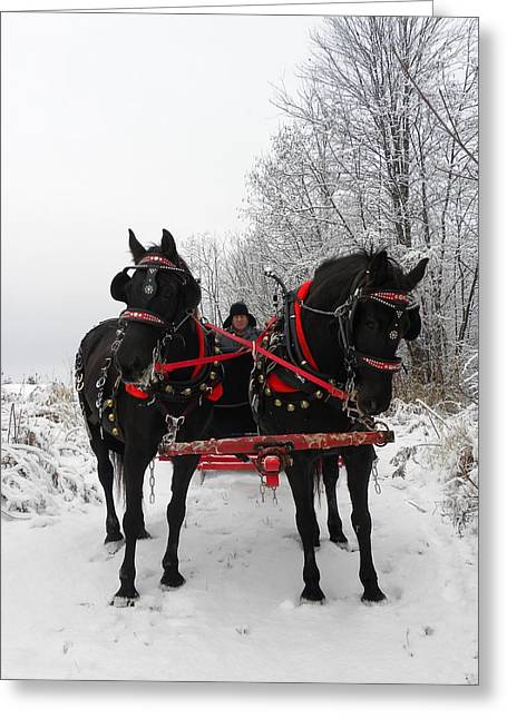 Canadian Team In A Winter Wonderland Greeting Card