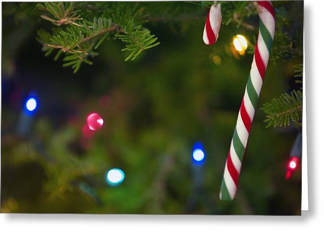 Candy Cane On Tree Greeting Card by Carson Ganci