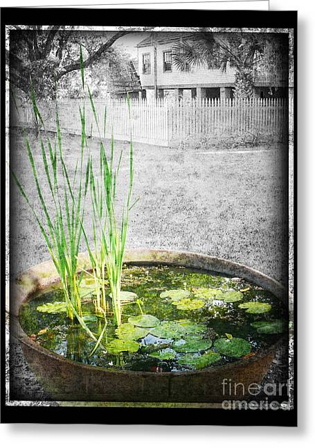 Greeting Card featuring the photograph Cane Pot And Water Lily by Jeanne  Woods