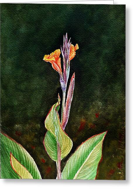 Canna Lily Greeting Card by Irina Sztukowski