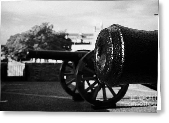 Cannons On The Mall Wall And Double Bastion Section Of Derrys City Walls Greeting Card by Joe Fox
