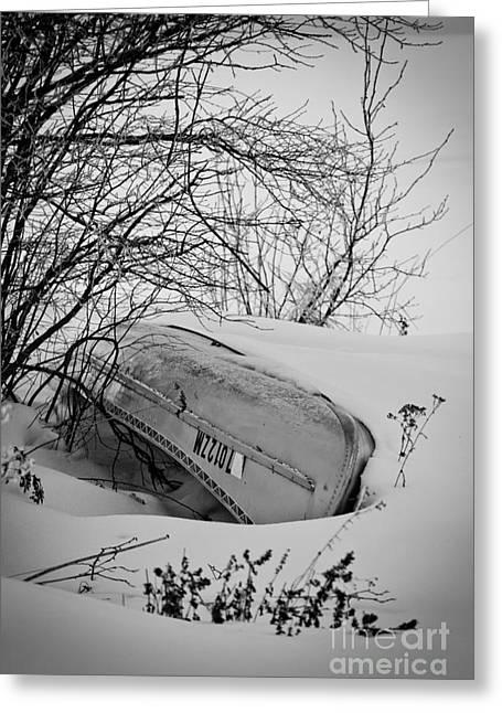 Canoe Hibernation Greeting Card by Mark David Zahn Photography