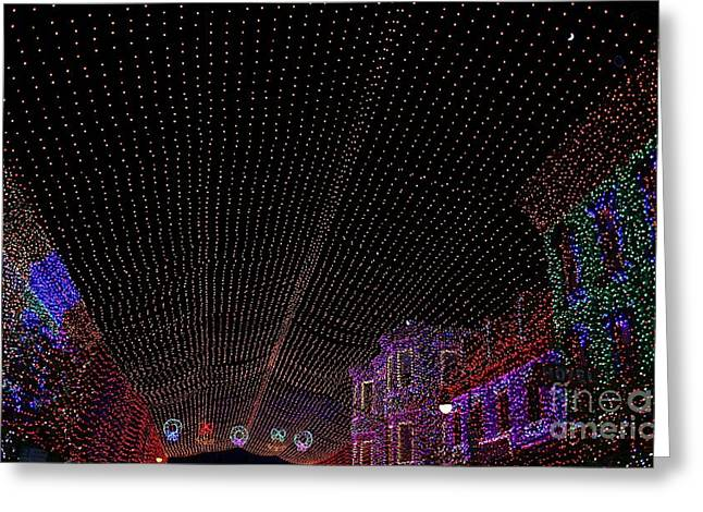 Canopy Of Lights Greeting Card by Ronnie Glover