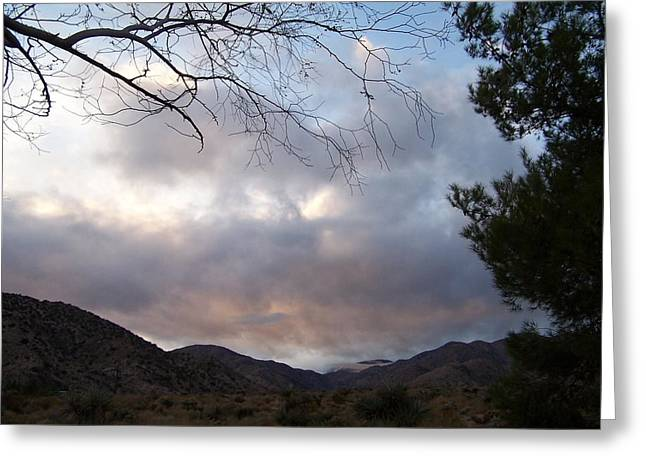 Canyon Sky Greeting Card by Christine Drake