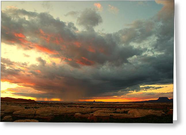 Canyonlands Sunset Greeting Card by William Joseph