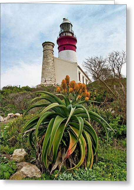 Cape Agulhas  Greeting Card by G Wigler