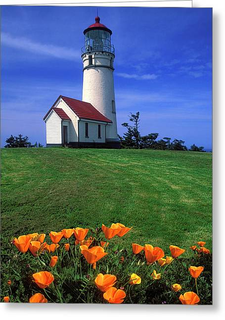 Cape Blanco Lighthouse Oregon Greeting Card by Dave Mills
