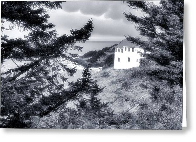 Cape Foulweather Greeting Card by Lora Fisher Photography
