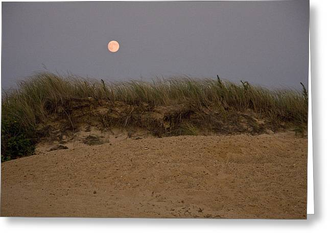 Cape Moonrise Greeting Card by Michael Friedman