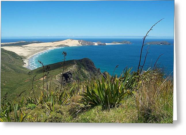 Cape Reinga - North Island Greeting Card by Peter Mooyman