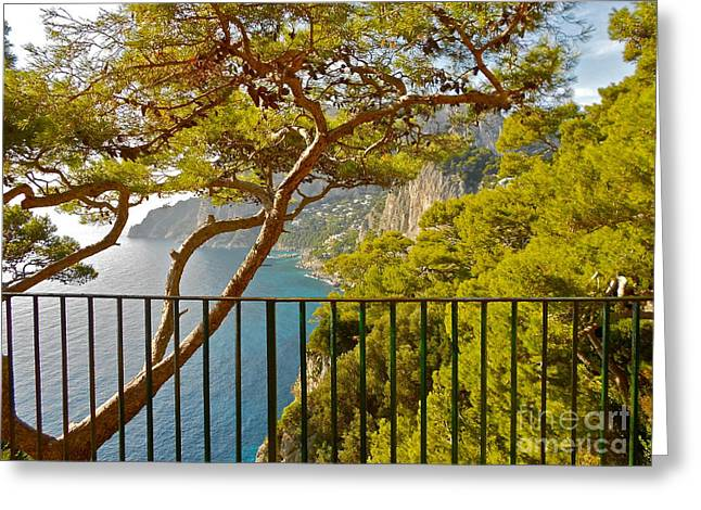 Capri Panorama With Tree Greeting Card