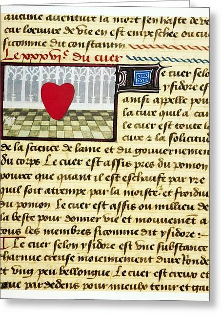Cardiac Treatise, 15th Century Greeting Card by