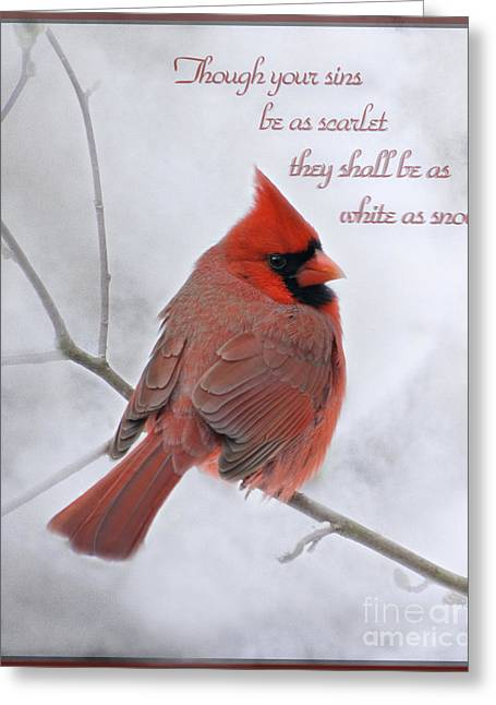 Cardinal In The Snow - D001540 Greeting Card by Tandem Designs