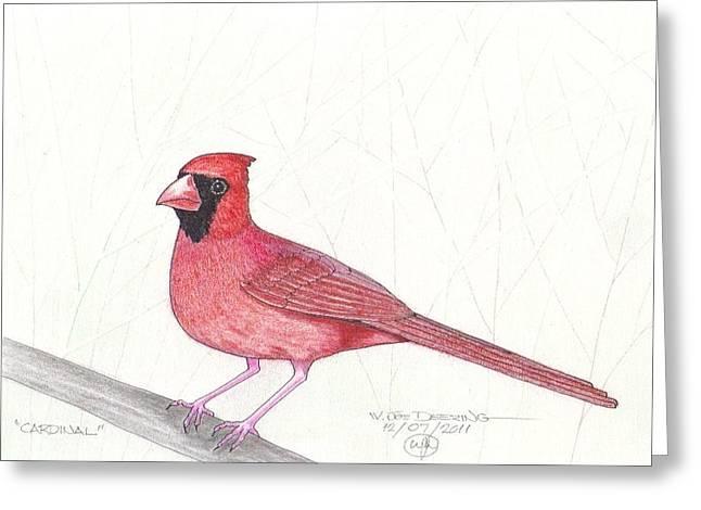 Cardinal Greeting Card by William Deering