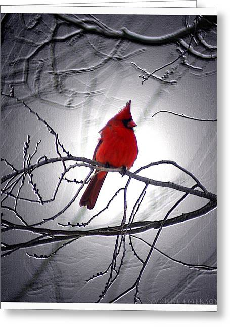 Greeting Card featuring the photograph Cardinal by Yvonne Emerson AKA RavenSoul