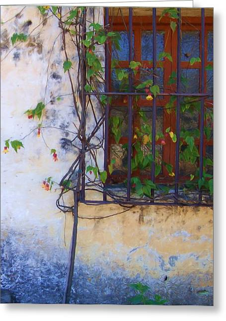 Carmel Mission Window And Flowers Greeting Card by Jim Pavelle