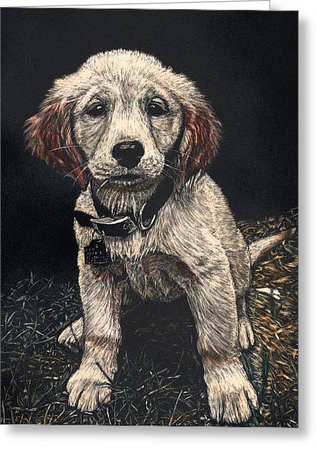 Carmen The Puppy Greeting Card by Robert Goudreau