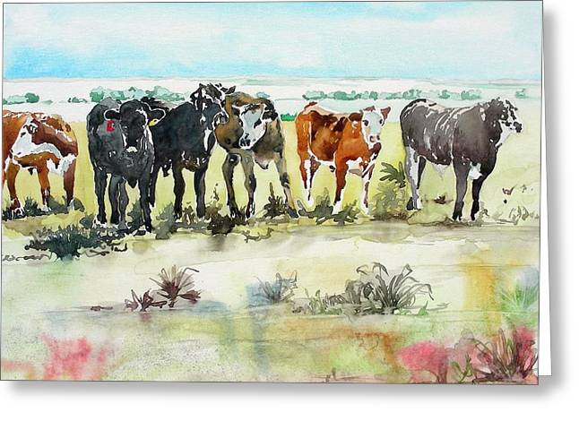 Greeting Card featuring the painting Carol's Cows by Tom Riggs
