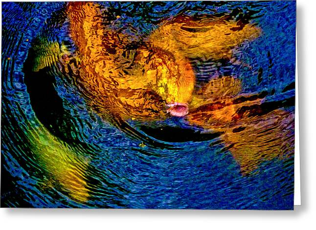 Carps In Motion Greeting Card by Ken Stanback