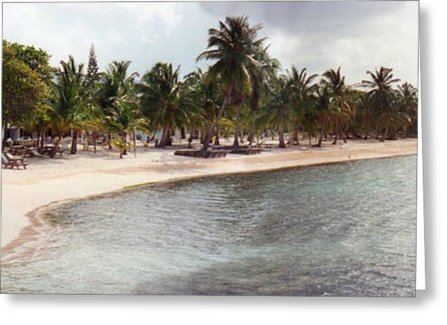 Carribean Shore Greeting Card
