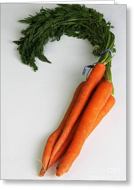 Carrots Greeting Card by Photo Researchers, Inc.