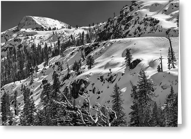 Carson Pass Greeting Card by A A