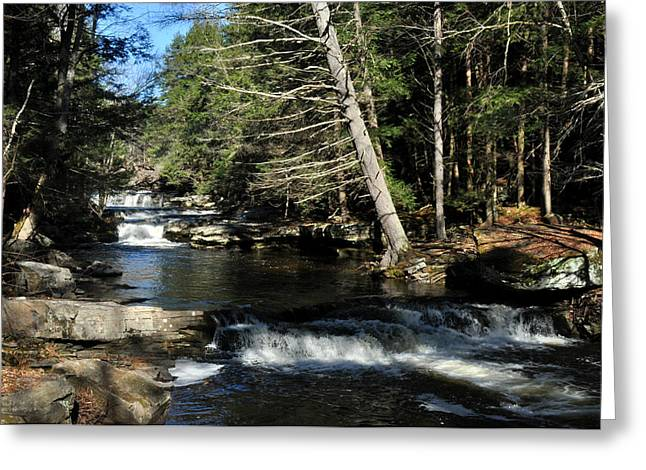 Cascade In The Catskills Greeting Card by Diane Lent