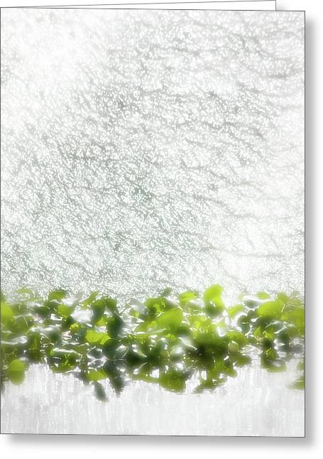 Greeting Card featuring the photograph Cascade by Richard Piper