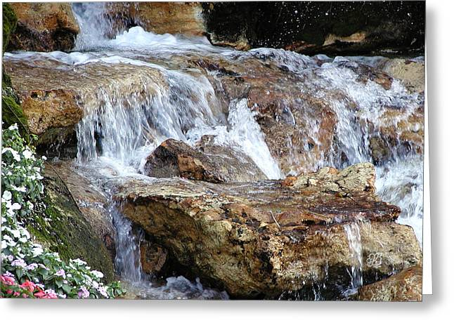 Cascading Water Greeting Card by Barbara Middleton