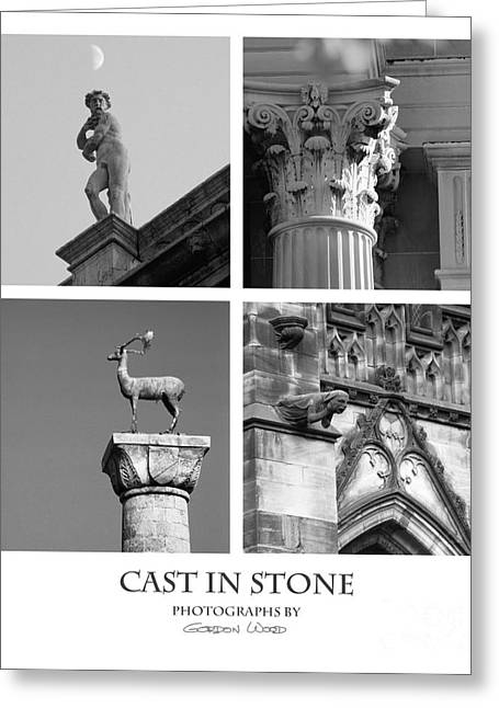 Cast In Stone Greeting Card by Gordon Wood