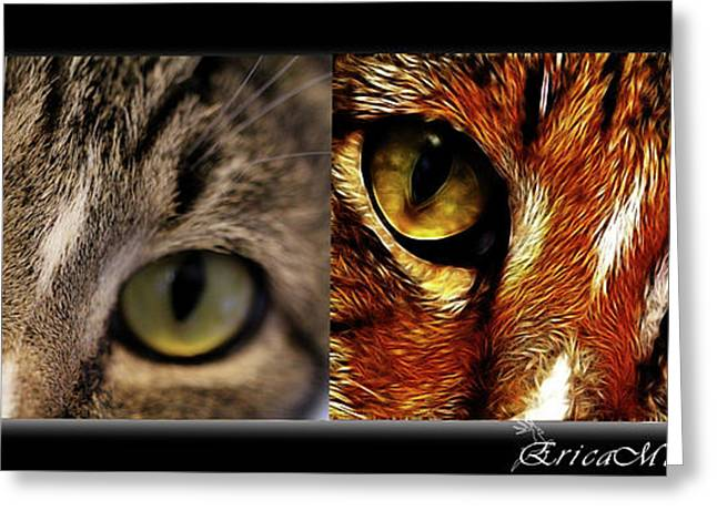 Cat Eyes Greeting Card by EricaMaxine  Price
