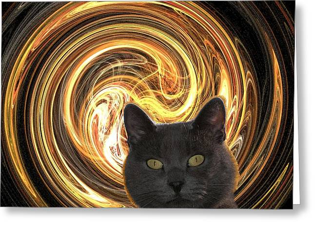 Cat In Spiral Of Life Greeting Card