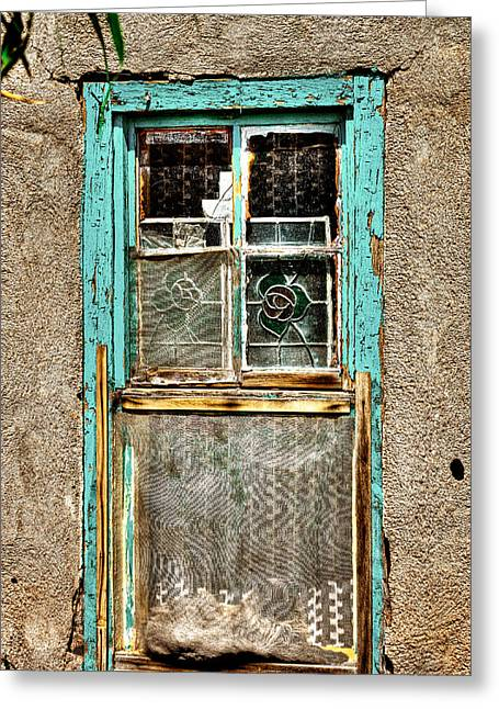 Cat In The Window Greeting Card by David Patterson