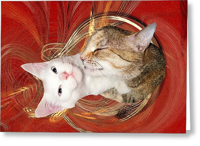 Cat Mother Love Greeting Card
