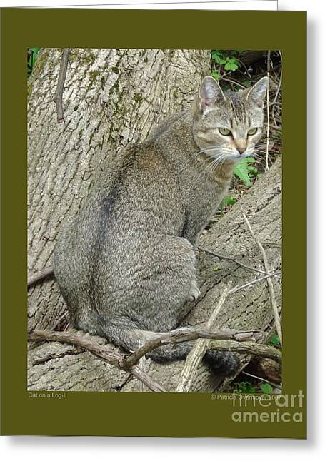 Cat On A Log-ii Greeting Card by Patricia Overmoyer