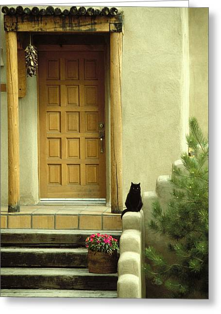 Greeting Card featuring the photograph Cat Post by Brent L Ander