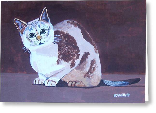 Cat With Brown Background Greeting Card by Eamon Reilly