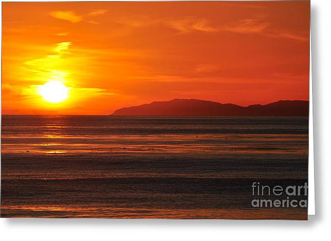 Greeting Card featuring the photograph Catalina Sunset by Johanne Peale