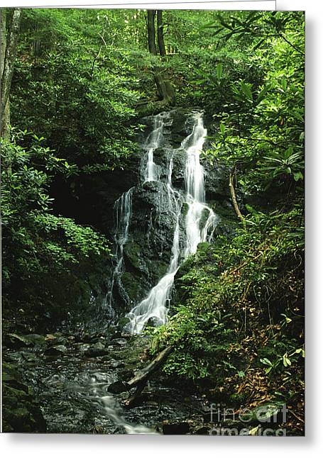 Greeting Card featuring the photograph Cataract Falls In Smokies by Arthaven Studios