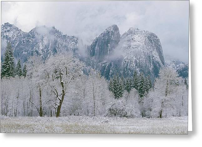Cathedral Rocks And Trees Greeting Card