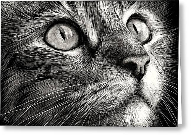 Cat's Face Greeting Card by Elena Kolotusha