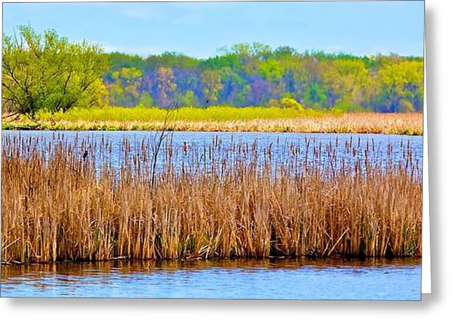 Greeting Card featuring the photograph Cattails by Joe Urbz