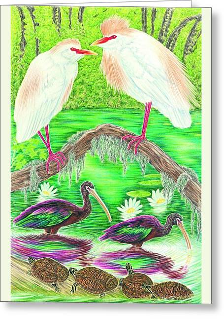 Cattle Egrets With Ibis Greeting Card