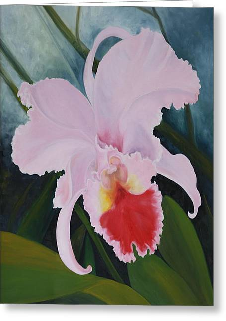 Cattleya Orchid Greeting Card by Don  Goetze