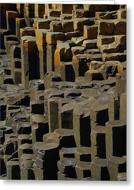 Causeway Stones Greeting Card by Cat Shatwell