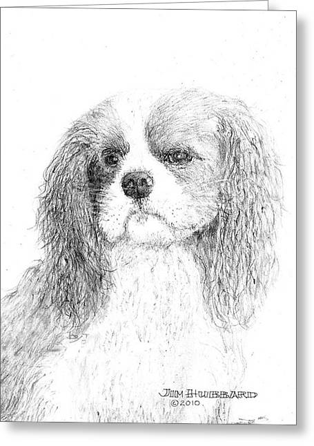 Greeting Card featuring the drawing Cavalier King Charles Spaniel by Jim Hubbard