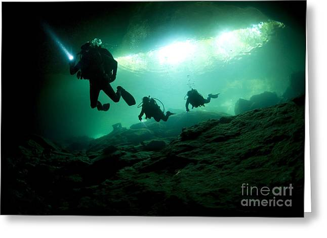 Cavern Divers Enter Cenote System Greeting Card by Karen Doody