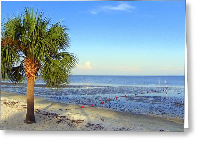 Cedar Key Beach Low Tide Greeting Card