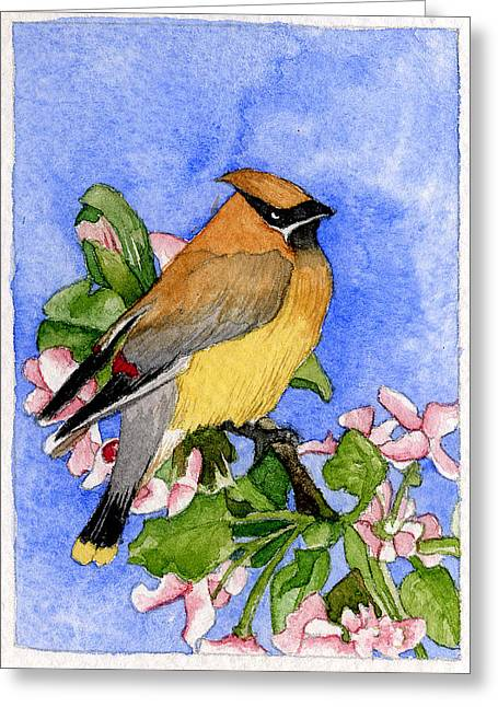 Cedar Waxwing In Spring Greeting Card by Eunice Olson