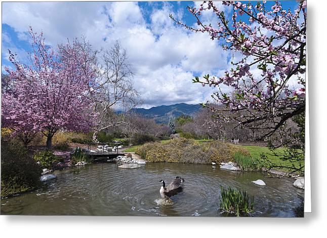 Celebrating Spring Greeting Card by Mike Herdering